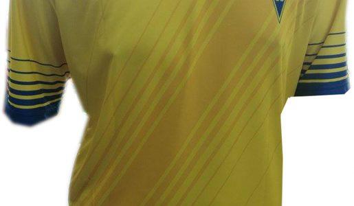 Camisola Principal Formação – 28€